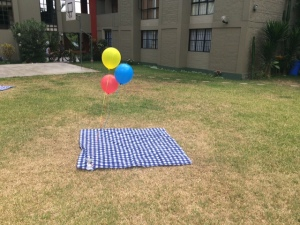 Las mantitas del picnic!